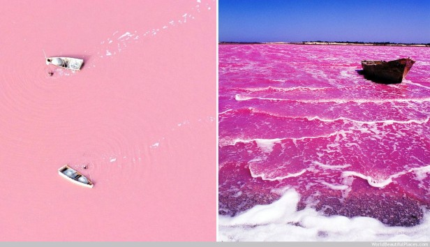 http://hayo.co/take-quick-look-pink-lake-lac-rose-senegal/